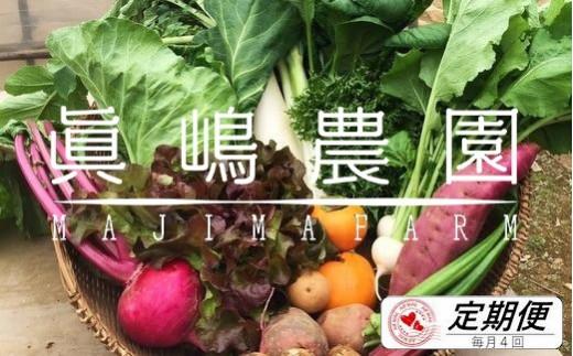 AE002 【毎月定期便4回】季節のおまかせ野菜セット