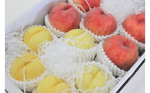0003-2010 黄金桃と白桃系の桃 詰合せ 3kg