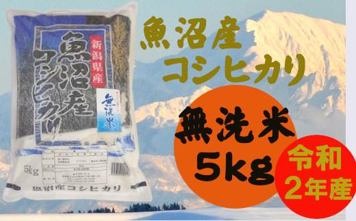 魚沼産コシヒカリ 無洗米5kg