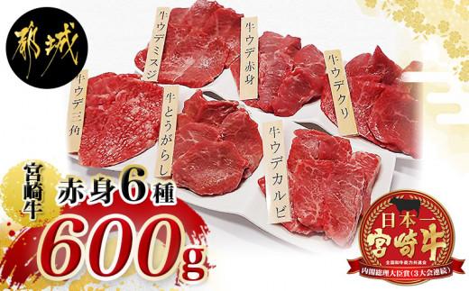 宮崎牛赤身6種600g_MJ-2612