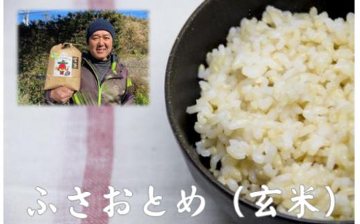 B208 にへじのふさおとめ5kg×2個(玄米)