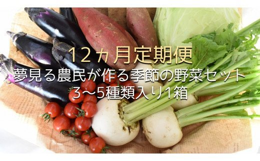 【12ヶ月定期便】 夢見る農民が作る季節の野菜セット 3~5種類入り1箱