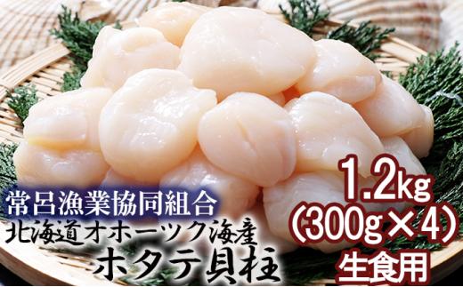 [№5742-1028]北海道オホーツク海産 ホタテ貝柱 1.2kg(300g×4) 生食用
