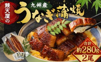 【丑の日配達指定】鰻天屋の九州産うなぎ 蒲焼 約140g×2尾 セット