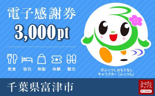 富津市電子感謝券 3000pt(1pt=1円)