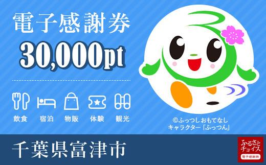 富津市電子感謝券 30000pt(1pt=1円)