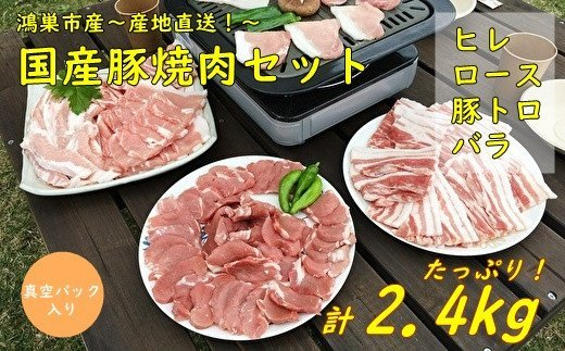 D-8 国産豚焼肉セット2.4kg(ヒレ・ロース・豚トロ・バラ)