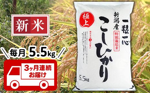 48-5H3【3ヶ月連続お届け】新潟県長岡産特別栽培米コシヒカリ5.5kg
