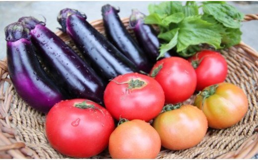 季節の美味しいお野菜をお届けします