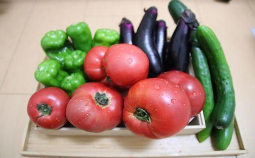 形や大きさは様々ですが、一関市内の農家さんが丹精こめて育てた美味しい野菜です