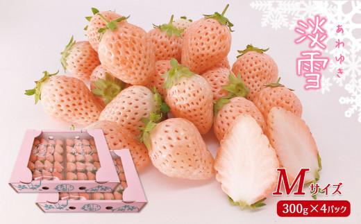 CB6 【限定100個】白いちご「淡雪」(Mサイズ以上1200g)【12月下旬発送】