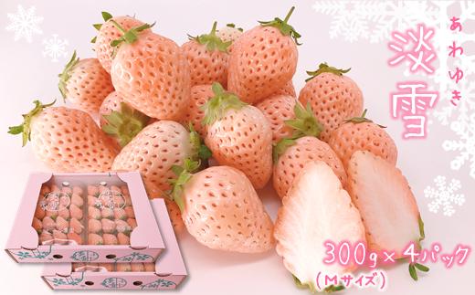 CB2 熊本玉名 白いちご「淡雪」(Mサイズ1200g)