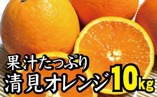 【農家直送】果汁たっぷり!清見オレンジ 約10kg  有機質肥料100%  サイズ混合 ※2022年3月上旬より順次発送予定(お届け日指定不可)