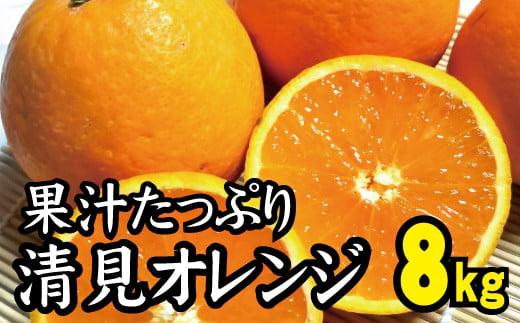 【農家直送】果汁たっぷり!清見オレンジ 約8kg  有機質肥料100%  サイズ混合 ※2022年3月上旬より順次発送予定(お届け日指定不可)