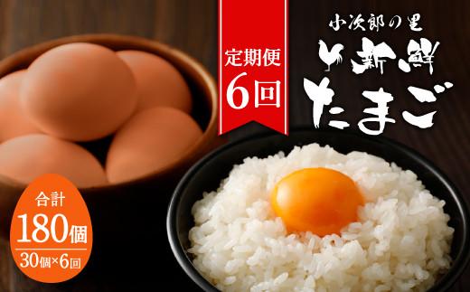 【6ヶ月定期便】鶏卵 30ヶ入×6回 合計180個