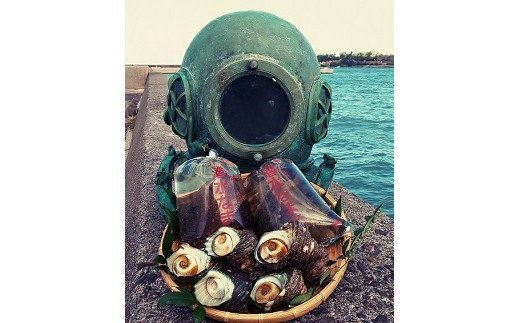 ヘルメット式潜水法用ヘルメットと磯めぐりセット