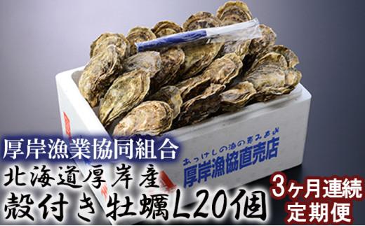 [№5863-0471]北海道厚岸産 殻付き牡蠣Lサイズ20個 連続3ヶ月お届け
