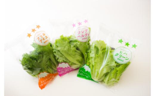 無農薬で、お子さまも安心して食べられます。