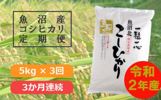特別栽培米魚沼産コシヒカリ5kg(3か月定期便)