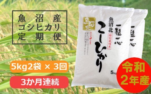 特別栽培米魚沼産コシヒカリ10kg(3か月定期便)