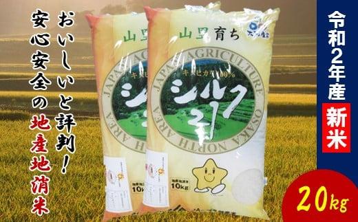 30-1 【令和2年産】大阪エコシルク21(キヌヒカリ)20kg