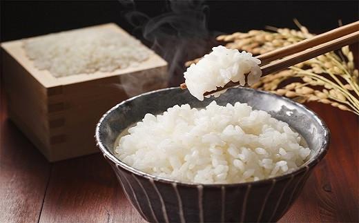 お家で日本一周!全国のお米×碧南の肉・魚介 6か月定期便 H028-016