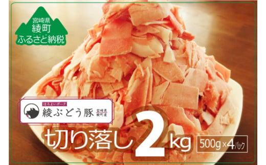 36-114_『綾ぶどう豚』モモ・ウデ切り落し2kg