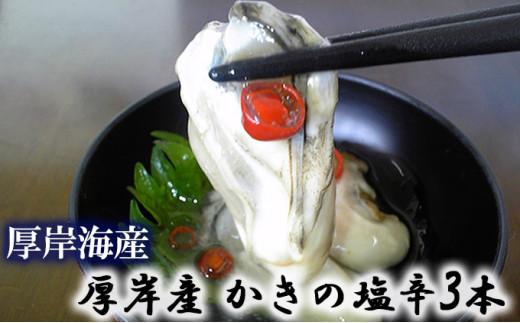 [№5863-0334]北海道厚岸産 かきの塩辛3本