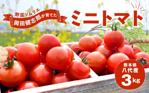 野菜 ソムリエ 岡田健志郎 が育てた ミニトマト 3kg