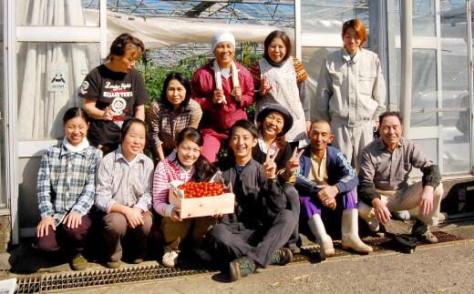 野菜 ソムリエ 岡田健志郎 が育てた ミニトマト 1.2kg