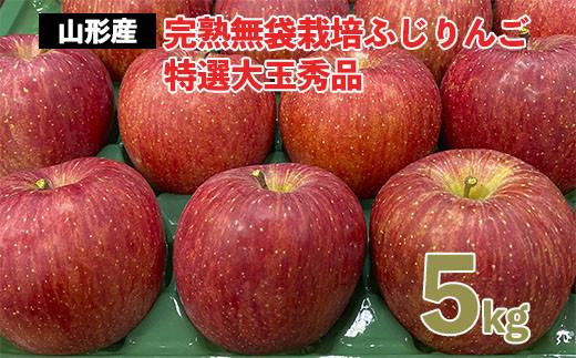 FY20-578 完熟無袋栽培ふじりんご 特選大玉秀品5kg入り