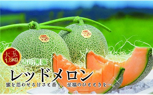 甘~い贅沢 「特選甘熟レッドメロン」北海道産どっさり8.5kg!! 02_H013