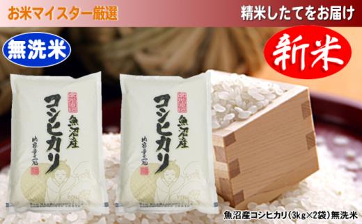 [№5762-0273][令和2年産]お米マイスター厳選 魚沼産コシヒカリ(無洗米)6kg(3kg×2)