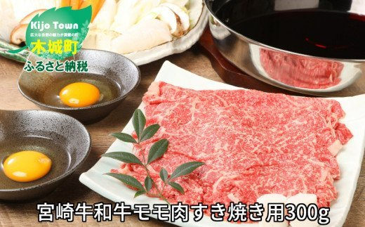 K01_0012 <宮崎牛和牛モモ肉すき焼き用300g>