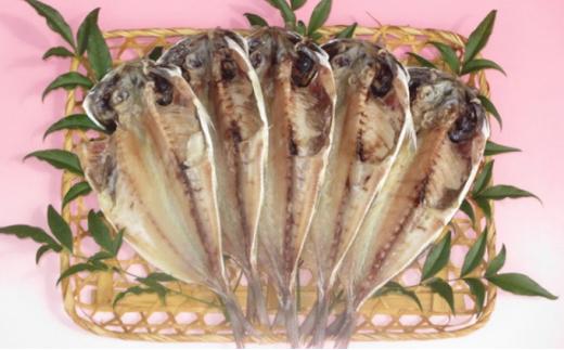 [№5227-0127]伊豆の味 かねた水産自慢の真あじ(とろあじ)の干物