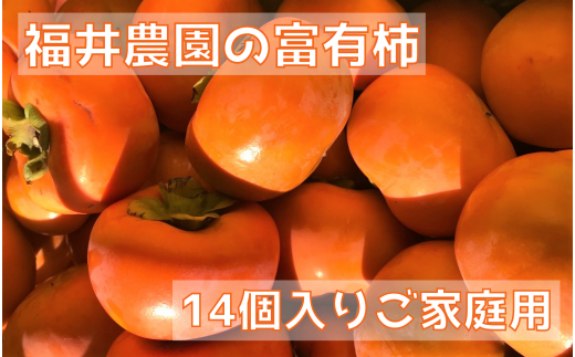 [柿の王様]福井農園の富有柿ご家庭用M・Lサイズ(14個) [0149]