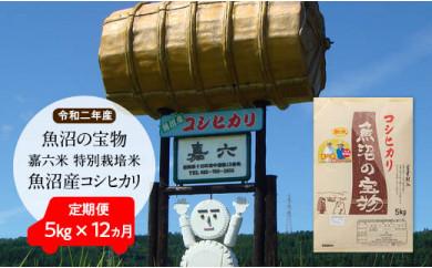 【令和二年産】定期便(5㎏×12ヶ月)魚沼の宝物 嘉六米特別栽培米魚沼産コシヒカリ