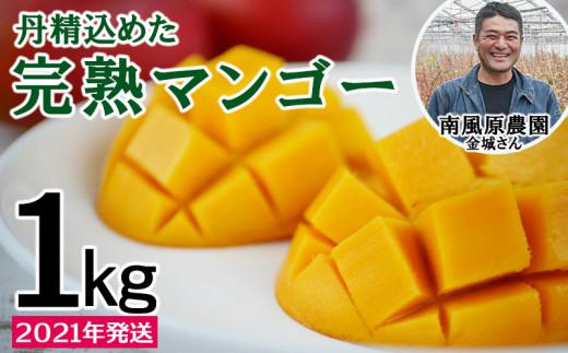 【2021年発送】<南風原農園>丹精込めた「完熟マンゴー」1kg