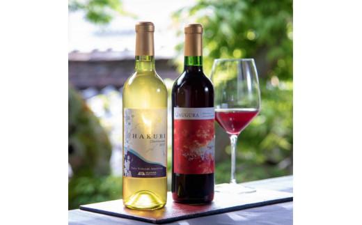 AE-4 新見市哲多町産のぶどう100%を使った岡山ワインバレーの日本ワイン(赤・白)2本セット