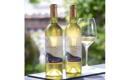 AE-2 新見市哲多町産のぶどう100%を使った岡山ワインバレーの日本ワイン(白)2本セット