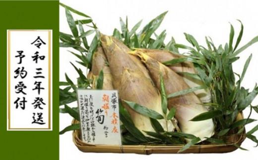 D0003.貝塚市木積産 徳用朝掘り筍 約3kg