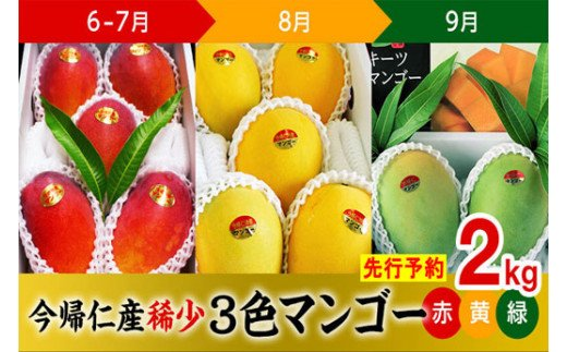 【100セット限定】稀少3色マンゴー(赤・黄・緑)各2㎏【先行予約】【2021年6月~7月頃・8月頃・9月頃】