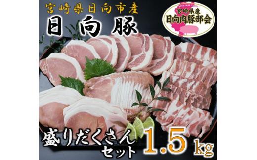13-13 日向豚の盛りだくさんセット1.5kg