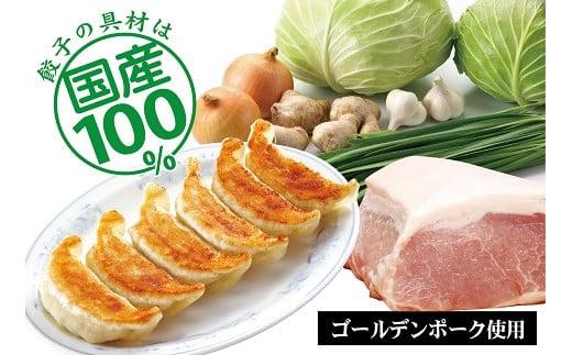 B001 プレミアム冷凍餃子72個(SAIBOKU×ぎょうざの満洲)