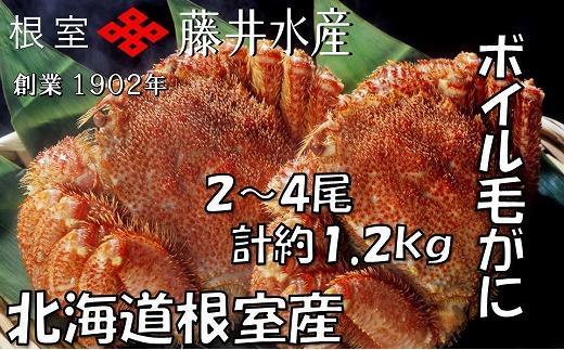 C-42060 【北海道根室産】ボイル毛がに2~4尾(計約1.2kg)