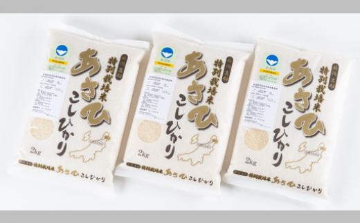 A4033 村上市産特別栽培米コシヒカリ6kg