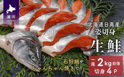 北海道日高産 生鮭姿切身 1尾2kg前後(約5切入りx4P)[01-858]