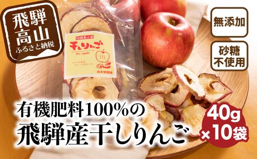 山本果樹園 干しりんご 40g入り 10袋 9月中旬~ 順次発送 a531