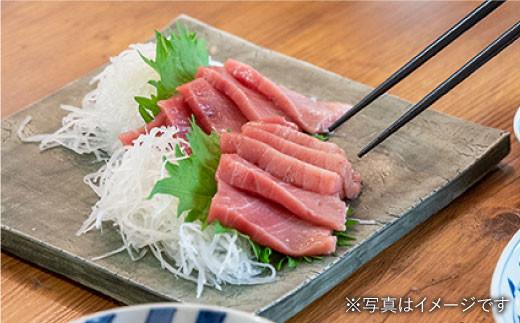 BAK012 長崎県産 本マグロ 中トロ700g 【大村湾漁業協同組合】-3