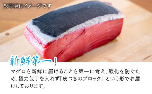 BAK012 長崎県産 本マグロ 中トロ700g 【大村湾漁業協同組合】-4